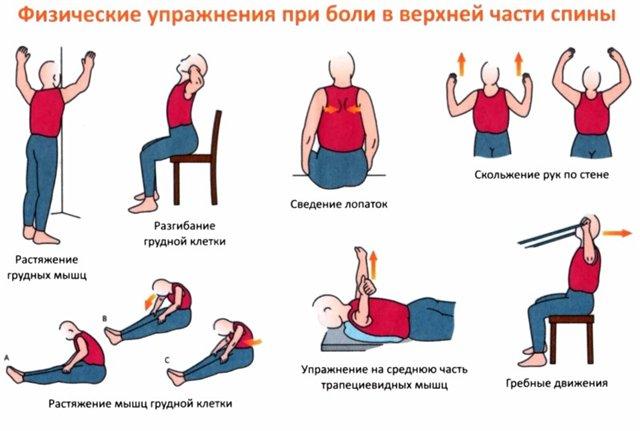 Упражнения для грудной части